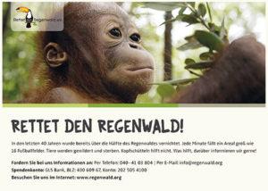 Abi Bücher Anzeige Baby Affe klammer sich an einen Ast