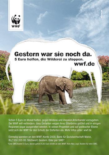 reianzeige für Abizeitung/Abibuch bei abigrafen.de