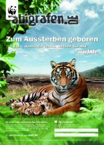 wwf-a4-4c-tiger
